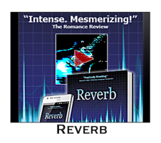WebsitesReverb